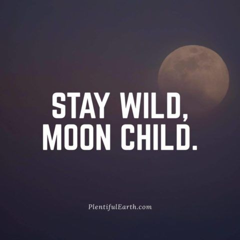 Stay Wild, Moon Child Wiccan Quote
