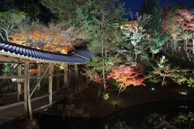 [OC] Tenryu-ji Temple At Night