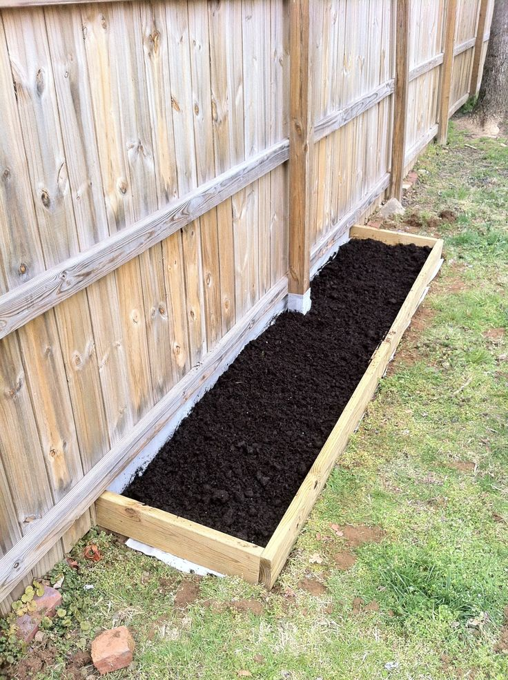 growing grapes and raspberries.  For future reference.  Some day I will have grapes and raspberries in my garden.