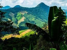 Výsledek obrázku pro thailand landscape