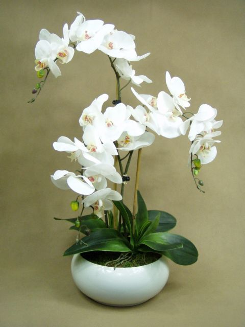 STORCZYKI LATEKS x3pędy (2409.3) super jakość sztuczne kwiaty Kompozycje kwiatowe Marko604