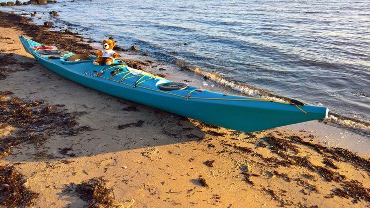Der Urlaubär auf Kajaktour auf der Flensburger Förde, Ostsee, Schleswig-Holstein, Deutschland ... #urlaubär #kajak #kayak