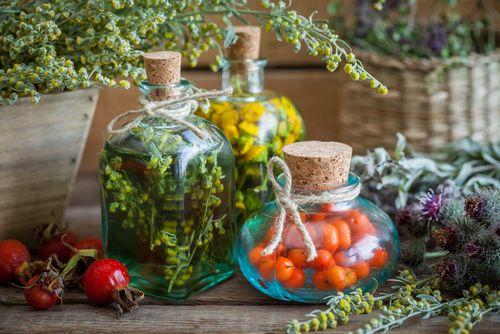 Likér můžete vyrobit z rozmanitých bylinek i plodů