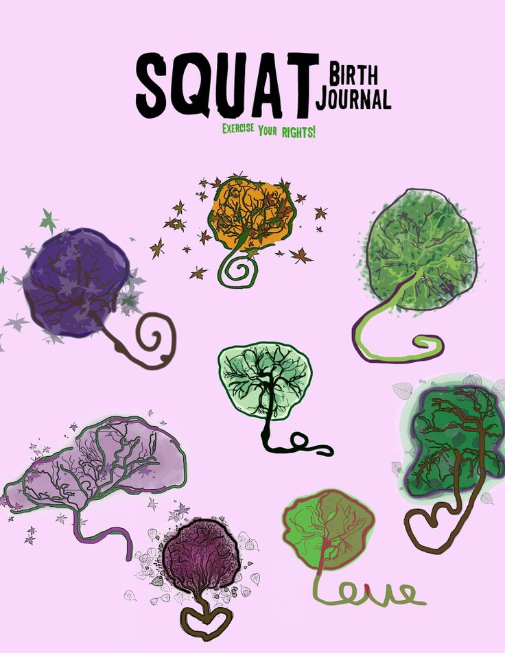 SQUAT Birth Journal, Fall 2013. Placentas! Cover art by Stacey DiMuzio. #squat #placenta #placentaprint #birth #midwifery