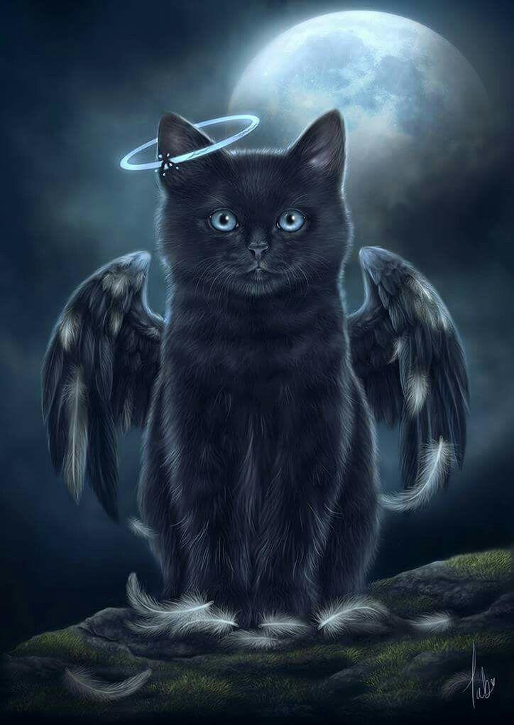 Engelskatzenkunst für unsere geliebten schwarzen Katzen. Kunst der Katzen-Klugh – Hintergrundbilder – #der #Engelskatzenkunst #für #geliebten