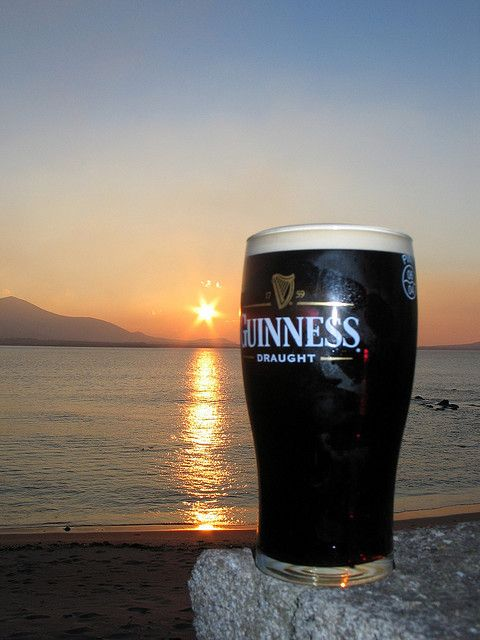 232 Best Guiness Beer Images On Pinterest Beer Guiness