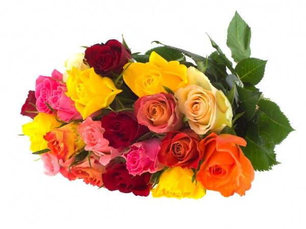 A stunning bouquet overflowing with a mixed array of roses perfect for any ocassion