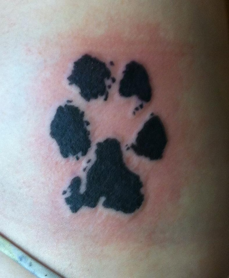 Paw Print Tattoos With Flowers: 97 Best Ink Me, Baby, One More Time! Images On Pinterest