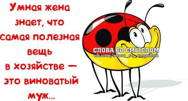 Прикольные фразочки в картинках №180314 » RadioNetPlus.ru развлекательный портал