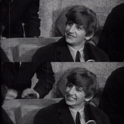 Ringo. Love. Stop being so perfect, and small, and pure, and so HAPPY. It's too much! ☀️