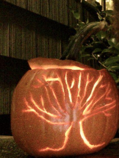 Tree pumpkin carving my diy pinterest trees