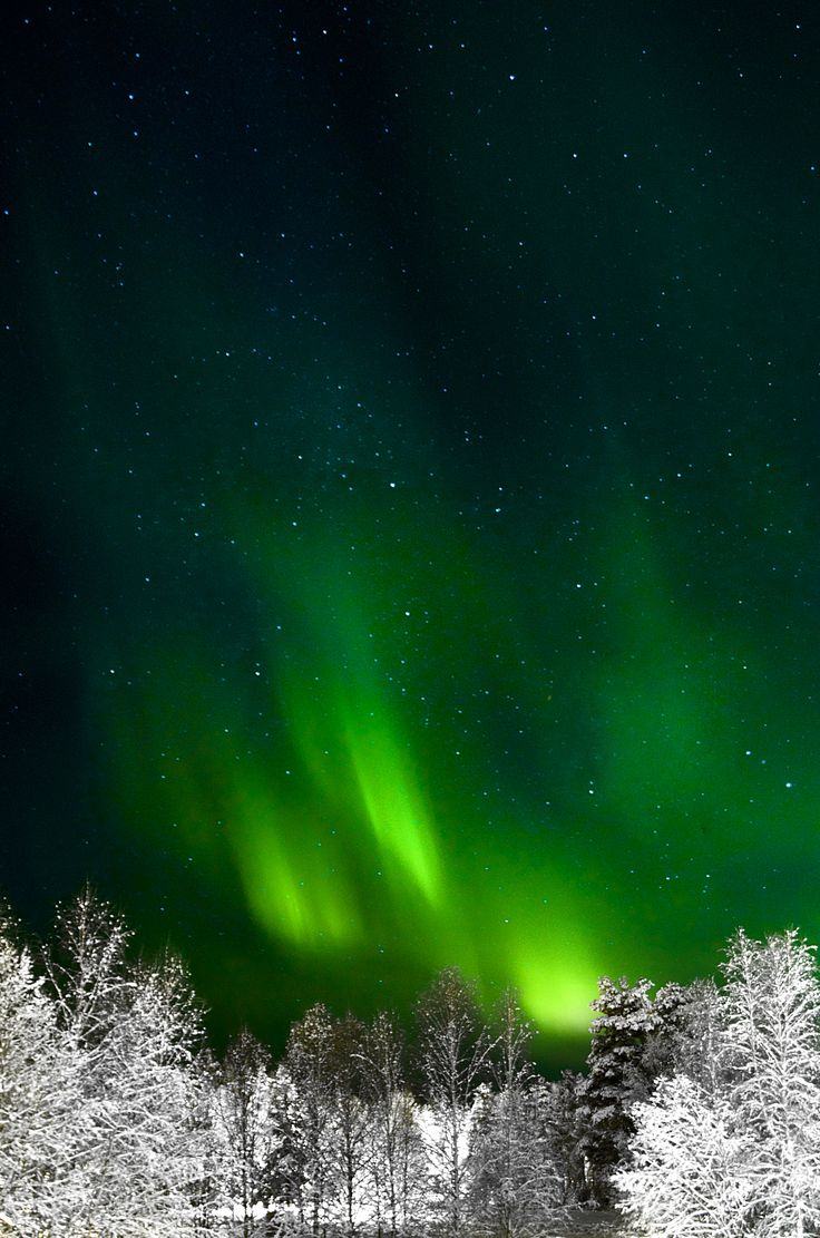 Northern Lights/ 2014/ Lycksele/Sweden/ Anna Sofia Koumbarou