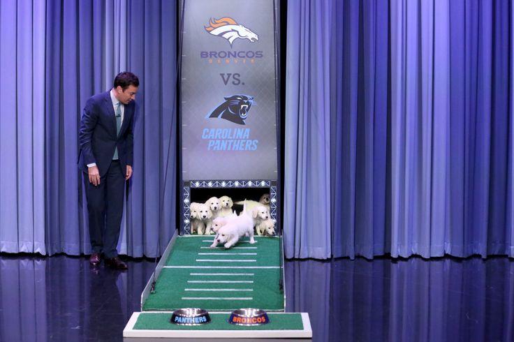 Steelers Super Bowl Champions Reunite #WhatTimeIsTheSuperBowl...: Steelers Super Bowl Champions Reunite… #WhatTimeIsTheSuperBowl