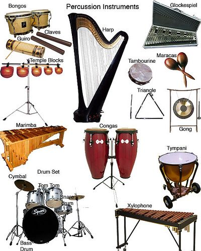 Image detail for -Percussion Instruments -- though the only harp player I know personally played with my school's string ensemble, not percussion in band