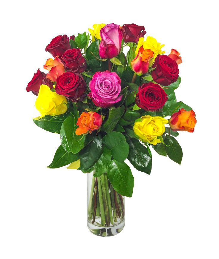 https://www.kvetinyvs.cz/cs/content/8-jake-kvetiny-vybrat-na-den-matek  Poděkujte svoji mamince květinou