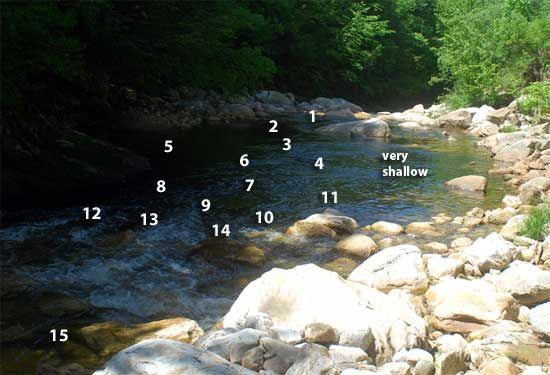 Dry Fly Fishing in Small Streams