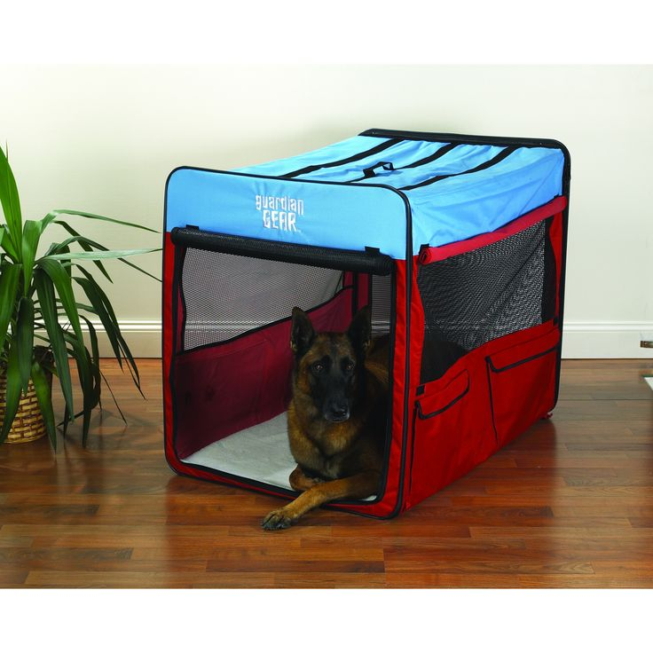 guardian gear red blue extralarge collapsible dog crate - Collapsible Dog Crate