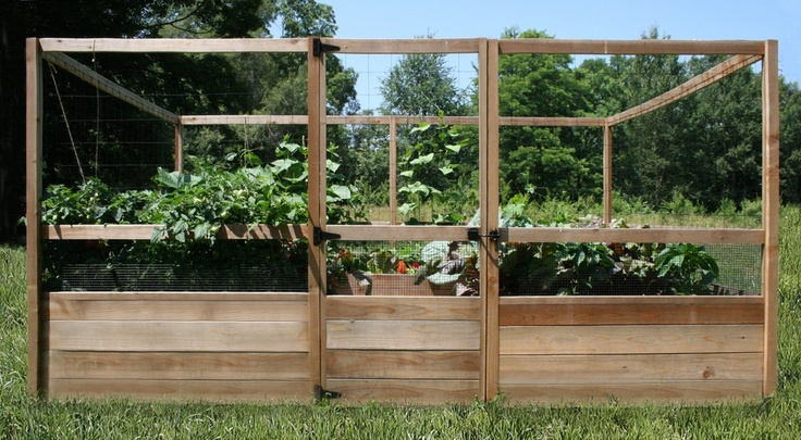 Feed A Family Of Six And Keep Deer Out: All In One Raised Bed Garden Center  | Yard And Garden | Pinterest | Gardens, Garden Ideas And Raised Bed