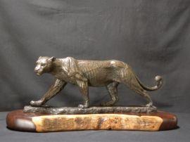 stefan-rossouw Leopard