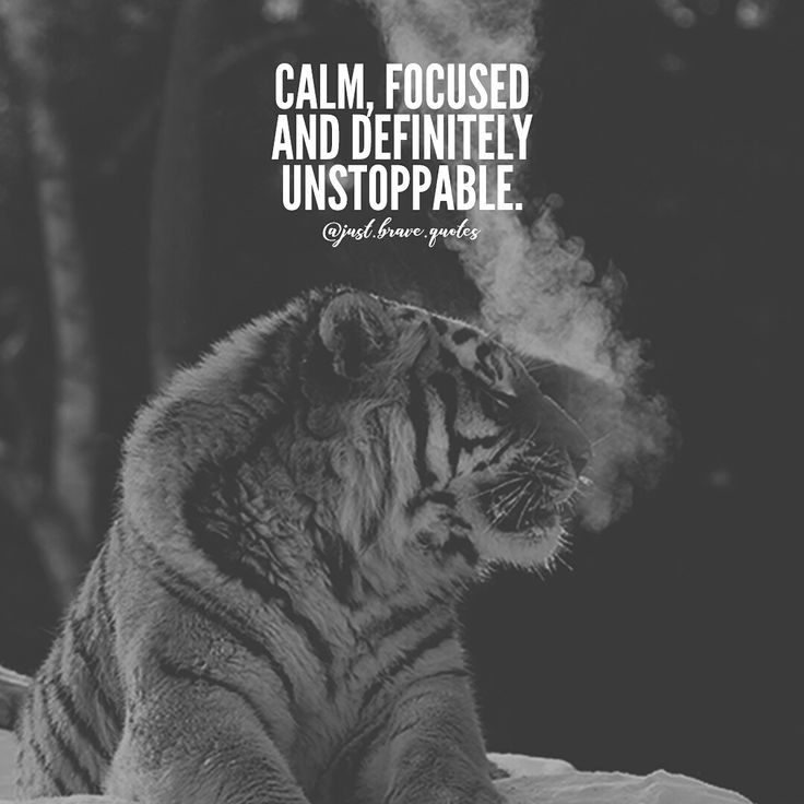 Being calm and focused makes unstoppable possible.  A quiet mind is the one that is capable of accomplishing the most daunting tasks. K.H.