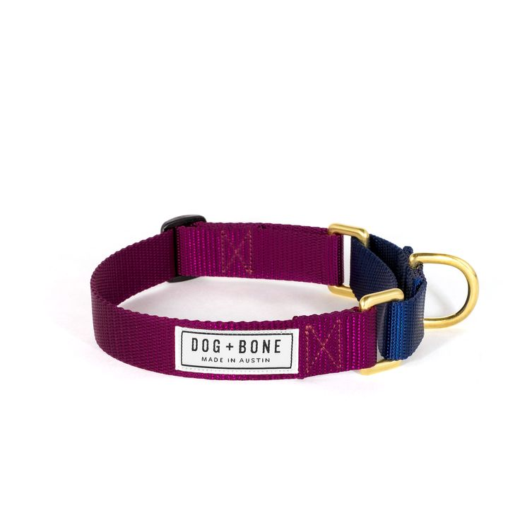 Martingale Collar: Purple & Navy — Dog + Bone | Also available in other color combinations