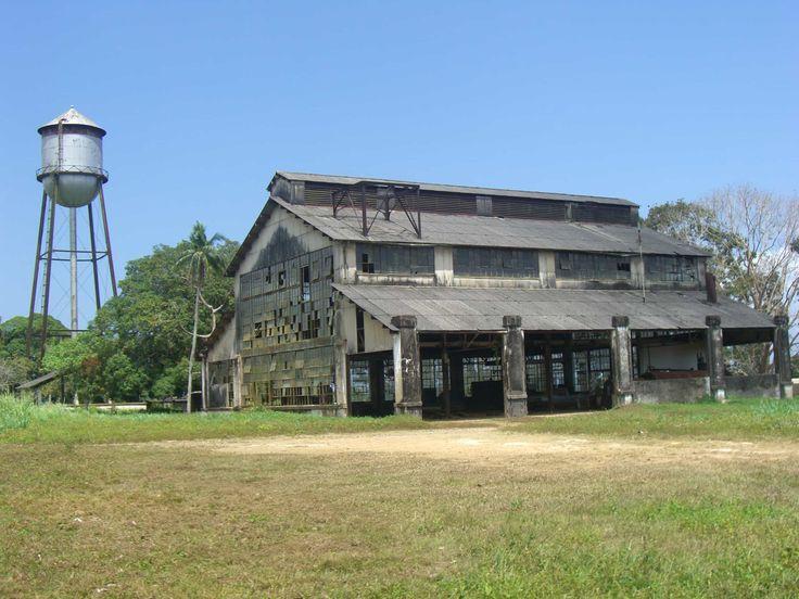 Fordlândia – Henry Fords vergessene Dschungelstadt #ford #fordlandia #dschungel