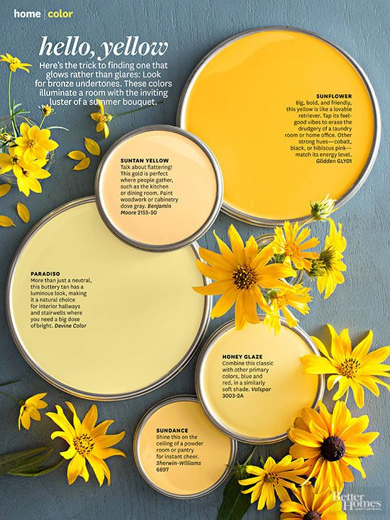 Yellow paint colors in Sunflower, Suntan Yellow, Paradiso, Honey Glaze, and Sundance.