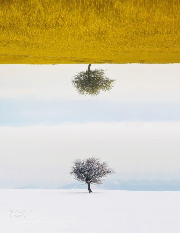 Seasons by christos-lamprianidis. @go4fotos
