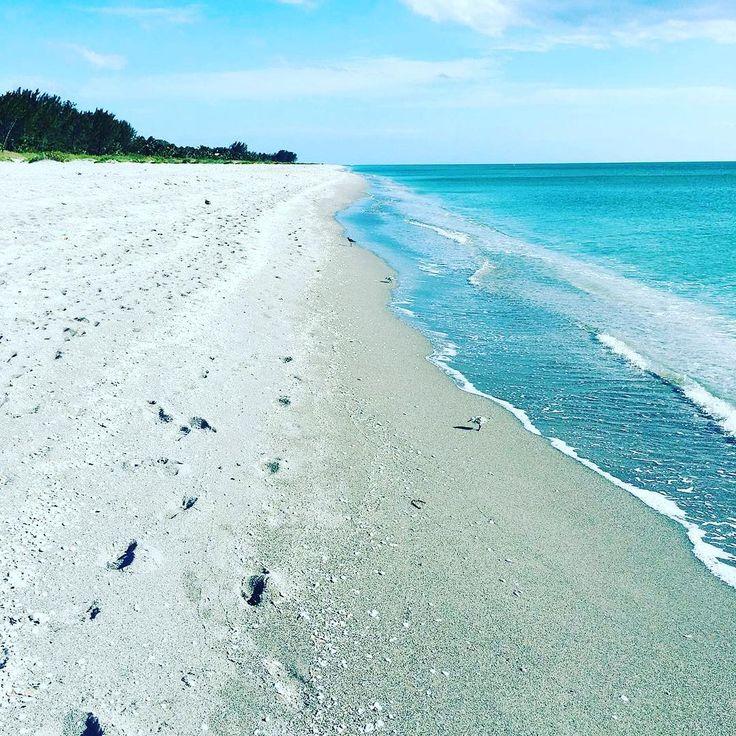 Sanibel Beach: 381 Best Ft. Myers/Sanibel/Captiva Beaches Images On