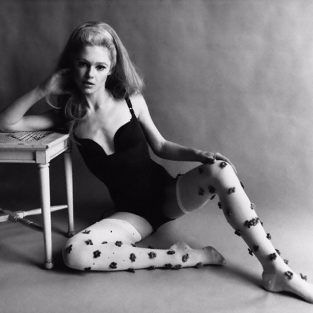 Edie Sedgwick - The Factory Girl!: Ediesedgwick, Fashion, Girl, Muse, Edie Sedgwick, Style Icons, Andy Warhol, Photo