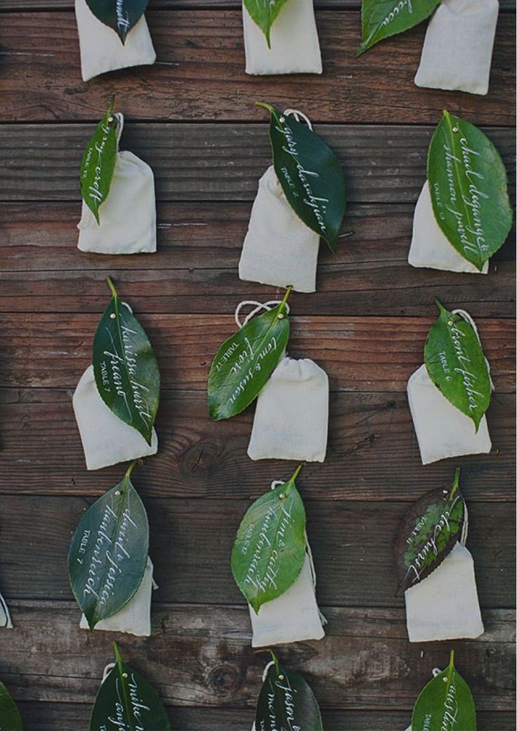 葉っぱをカードに♪ <グリーン・ナチュラルな結婚式エスコートカード・席札まとめ一覧>