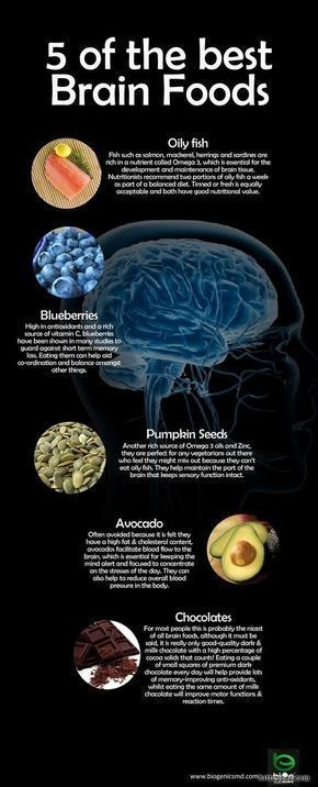 Food infographic Food infographic Seeds 5 of the best brain