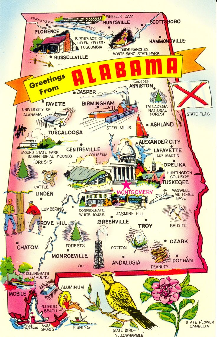 Best Images About Geography On Pinterest Alabama Lakes And - Map of usa with states and capitals and major cities