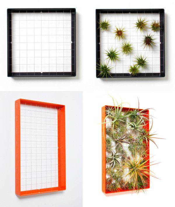 37 Best Images About Living Walls On Pinterest Gardens
