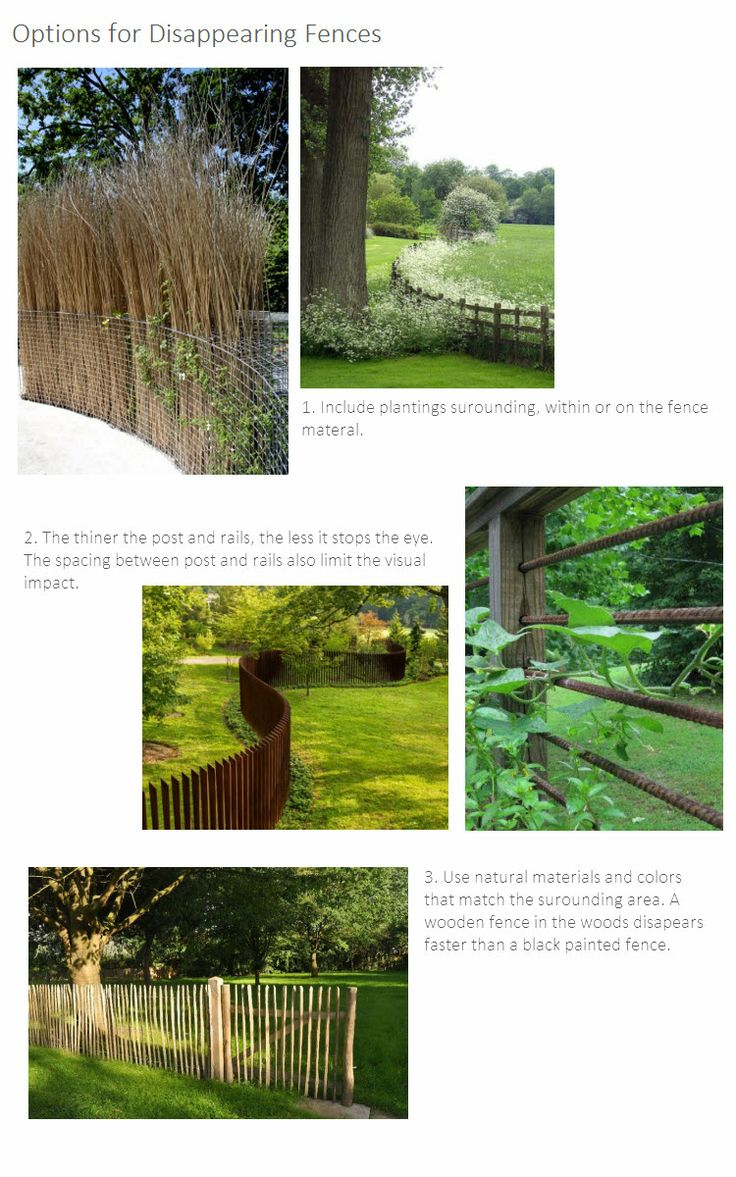 Options for Disappearing Fences, Thinking Outside the Boxwood