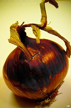 #Still Life - Onion