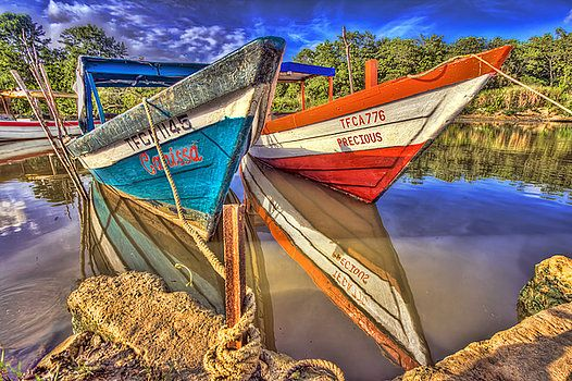 brightly colored wooden fishing boats in the caroni swamp in Trinidad an island in the Caribbean