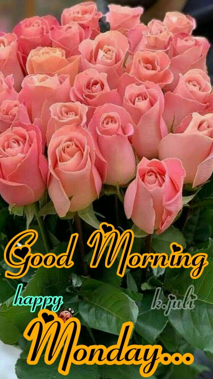 K Juli Good Morning Flowers Monday Morning Quotes Happy Monday Quotes