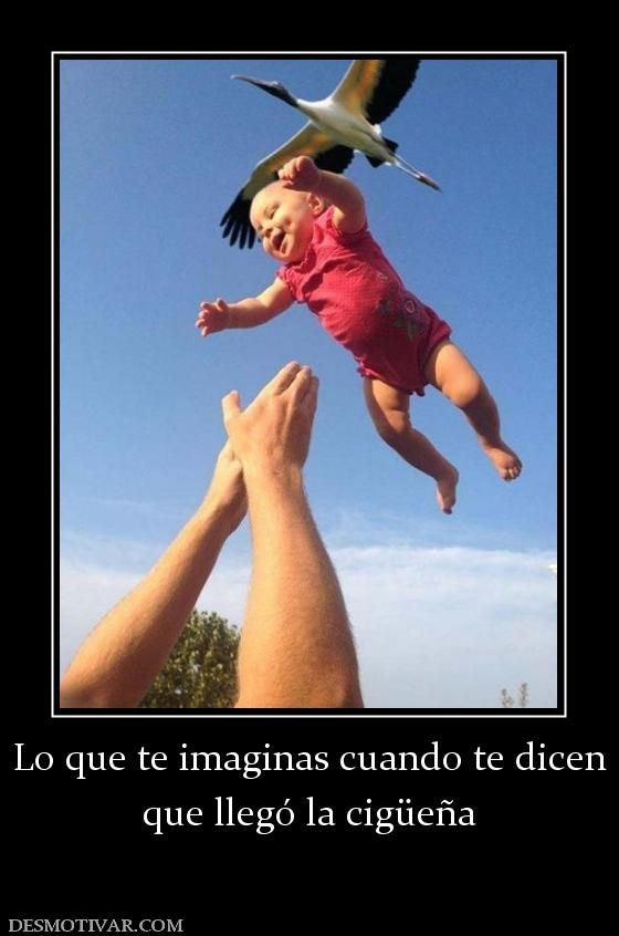 Lo+que+te+imaginas+cuando+te+dicen+que+llegó+la+cigüeña