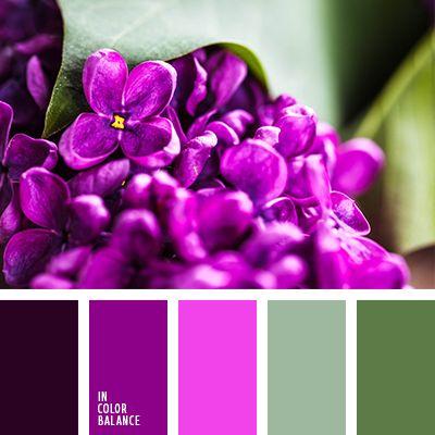 баклажанный, болотный зеленый, насыщенный розовый, оттенки зеленого, оттенки розового, пастельные оттенки, пастельный зеленый, салатовый, светло-салатовый, тёмно-зелёный, тёмно-розовый, цвет фуксии.