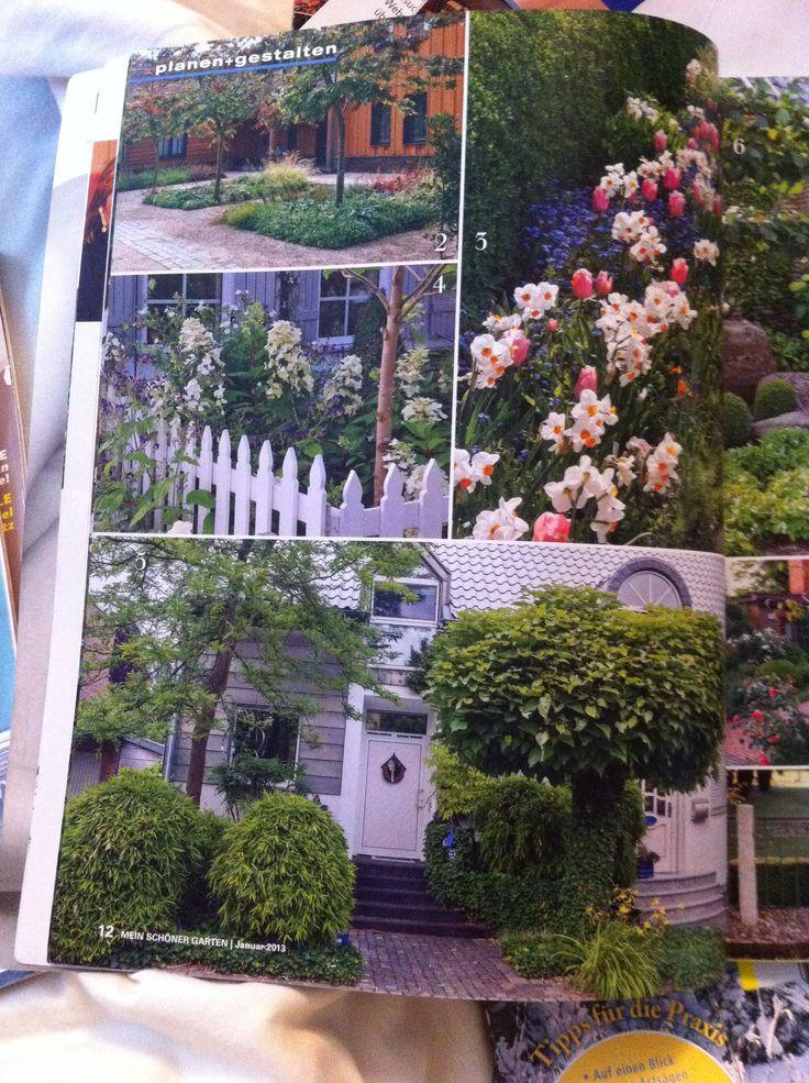 trompetenbaum g rten wiesengrund pinterest trompetenbaum und g rten. Black Bedroom Furniture Sets. Home Design Ideas