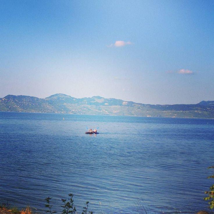 Petite randonnée canoé sur le lac Léman avec Babasport!  #startup #canoe #sportextreme #sport #adrenaline #babasport #lacleman #leman