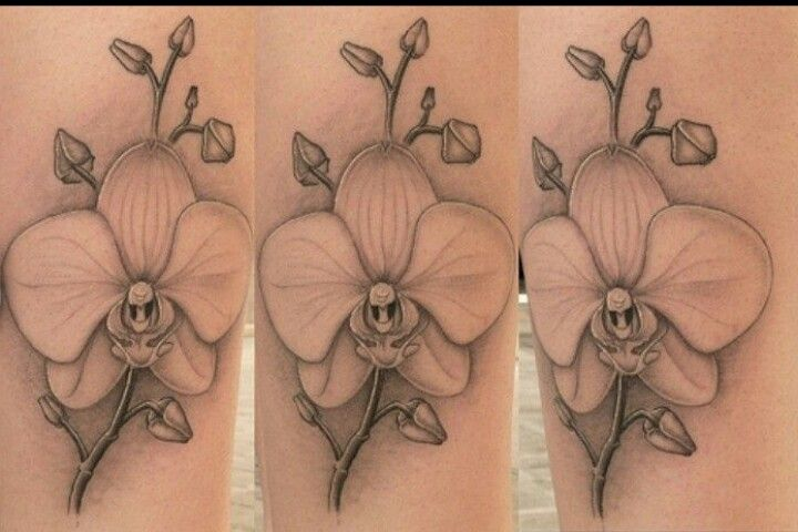 Orchard tattoo