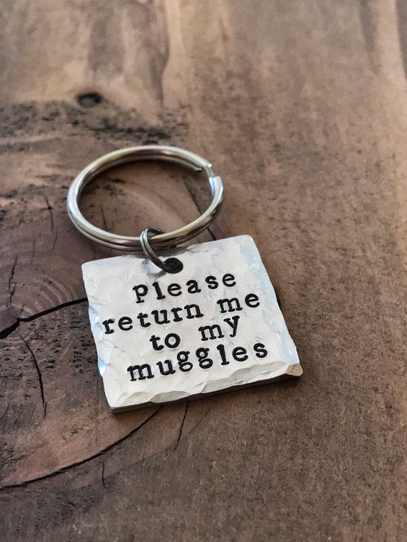 Humorous Customized Canine Tags for Canines Please Return Me