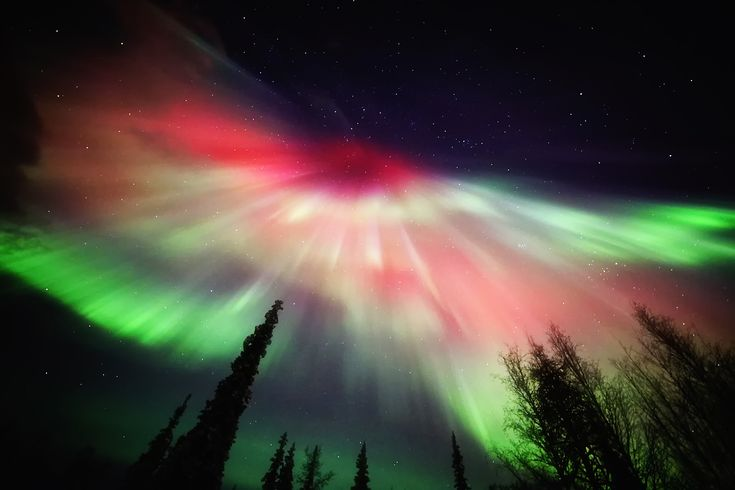 Northern Lights in pictures Northern lights, Northern lights - new blueprint alberta northern lights