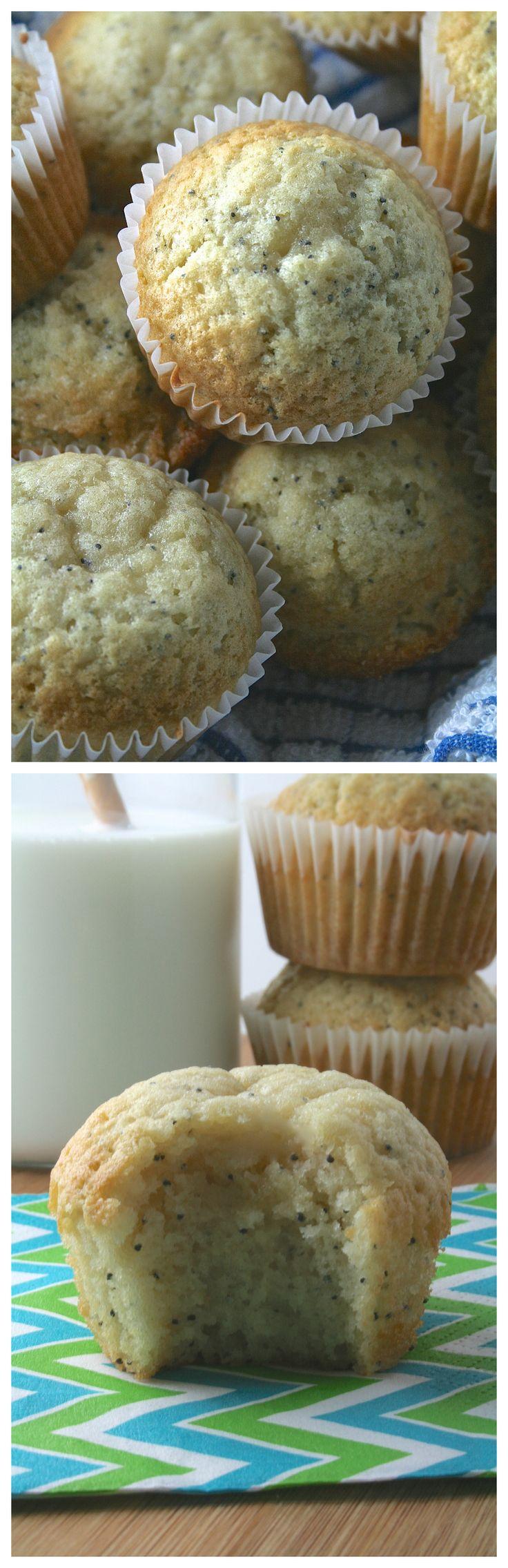 17 Best ideas about Poppyseed Muffin on Pinterest | Lemon poppyseed ...