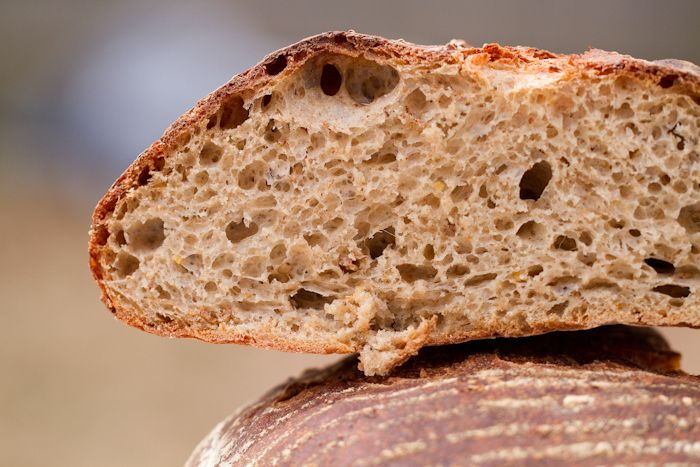Spent Grain Barm Bread - with krausen! House of Bakes » House of Bakes