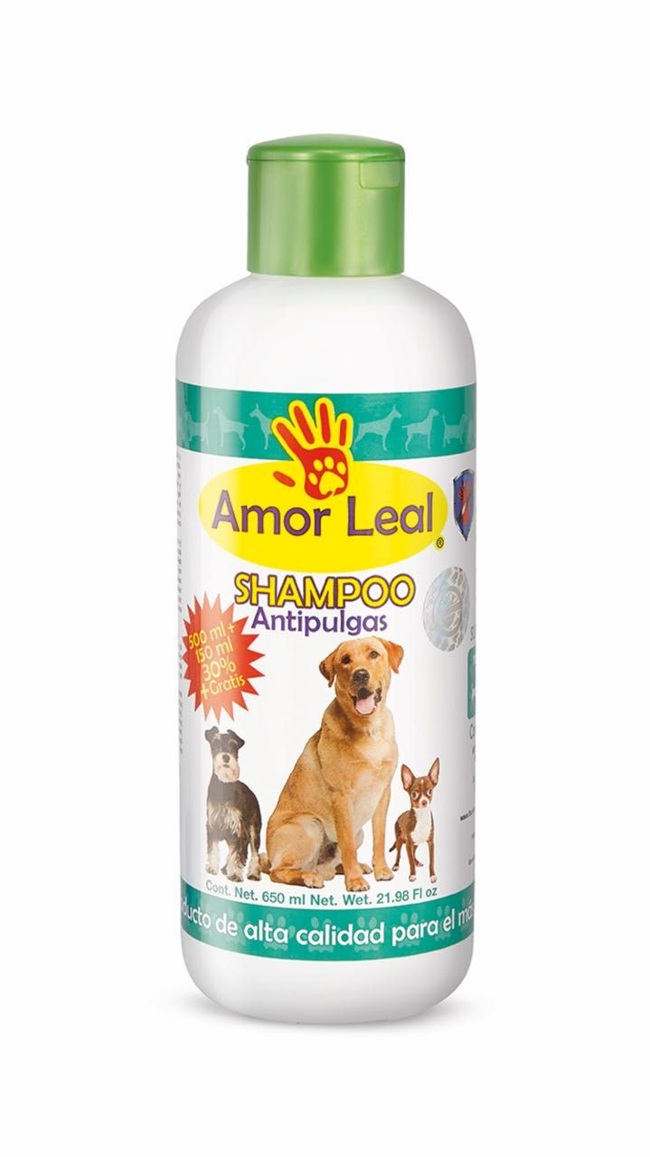 Shampoo antipulgas natural 100%