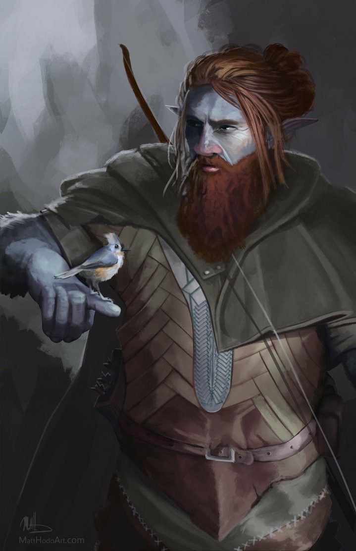Dungeons And Dragons Characters Image By Marcus Shepherd On