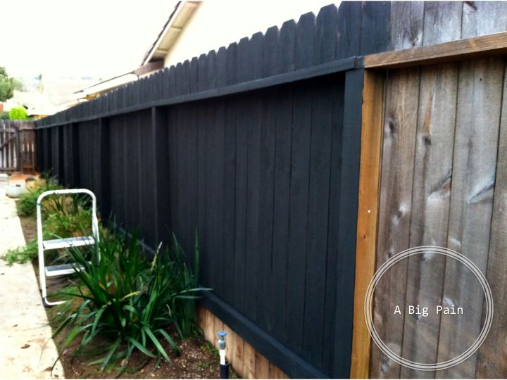 Dark Fence Stain | We also got to work on staining the 150 feet of back fence.